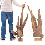 "Teakwood sculpture ""ROOTS 80"" 