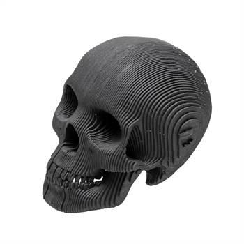 "3D Schädel Cardboard Safari SCHÄDEL ""VINCE"" Human Skull micro"