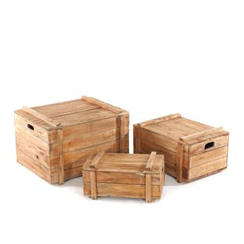 "3Pcs Trunk set ""YOYA"" 