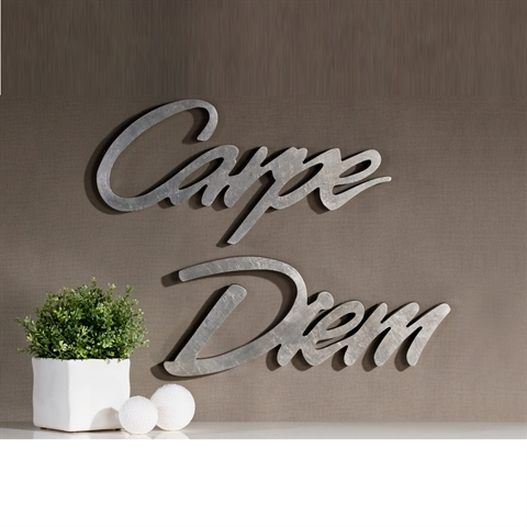 gro er deko schriftzug carpe diem 53cm wandtattoo wandbild wanddeko silber ebay. Black Bedroom Furniture Sets. Home Design Ideas